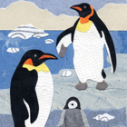 Emperor Penguins Collage